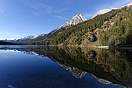 Italy, Alto Adige, Antholz Valley, lake in winter - LBF01545