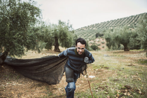 Spain, man pulling net in olive grove - JASF01477