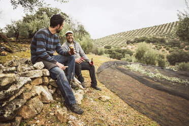 Spain, two men having a break in olive grove - JASF01504