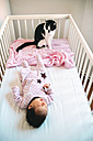Newborn baby girl lying in crib with a cat - GEMF01468