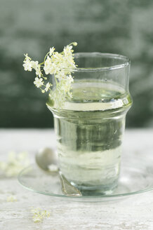 Glass of water flavoured with elderflower sirup - ASF06062