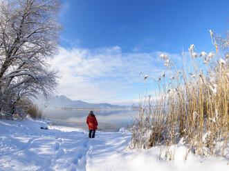 Germany, Bavaria, Kochel am See, woman standing at Lake Kochel in winter - LAF01819