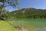 Austria, Tyrol, Sankt Ulrich am Pillersee, view to Pillersee with Ulrichshorn in the background - LBF01550