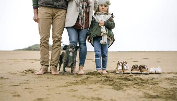 Low section of family with dog standing barefoot on the beach - DAPF00581
