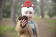 Boy wearing wooly hat in forest holding pine cones - RTBF00632