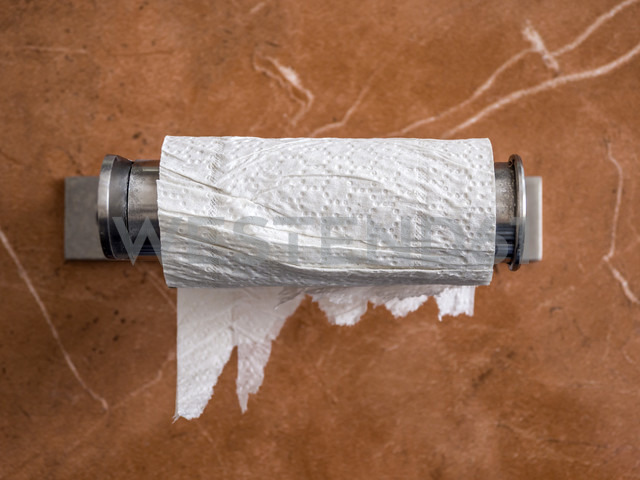 Empty toilet paper roll - EJWF00844