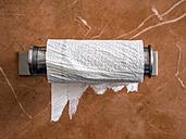 Empty toilet paper roll - EJWF00844