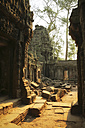 Cambodia, Angkor, Ta Prohm temple, Tomb Raider film location - REAF00197