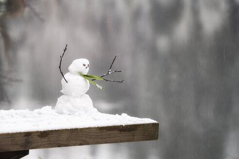 Miniature snowman - SMAF00687