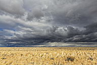 USA, Wyoming, Sweetwater County, plain with sorm clouds along the U.S. Route 191 - FOF08847