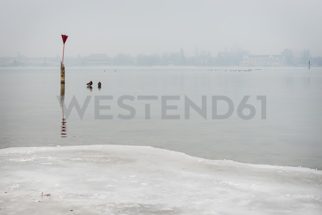 Germany, Lake Constance, view to Constance at morning mist in winter - KEBF00473