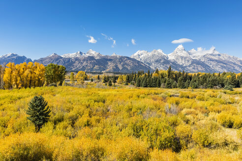 USA, Wyoming, Rocky Mountains, Grand Teton National Park, Cathedral Group and Snake River - FOF08860