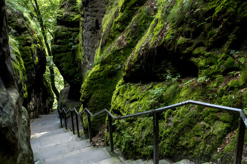 Germany, Saxony, Elbe Sandstone Mountains, Stairs of hiking path - LMF00596