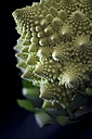 Romanesco broccoli, close-up - YFF00648