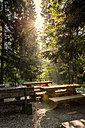 Czechia, Hradec Kralove, rest area and forest in Giant Mountains National Park - CSTF01245