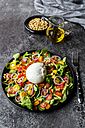 Plate of tomato salad with Burrata - SARF03193