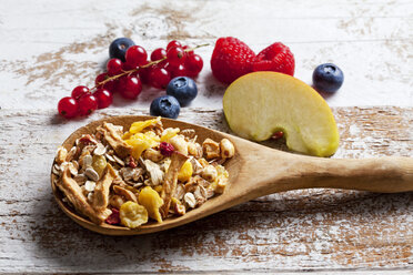 Wooden spoon of granola with dried fruits and fresh fruits on wood - CSF27917