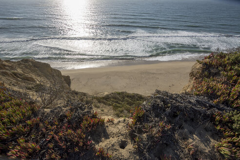 USA, California, view to beach and sea from cliff - LMF00682