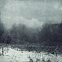 Germany, Wuppertal, winter landscape, textured photography - DWIF00826