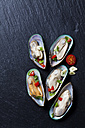 Green mussels with tomatoes, capsicum and garlic, on black slate slab - CSF27945