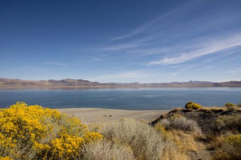USA, Nevada, Pyramid Lake - LMF00727