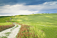 Italy, rolling landscape - SIPF01426