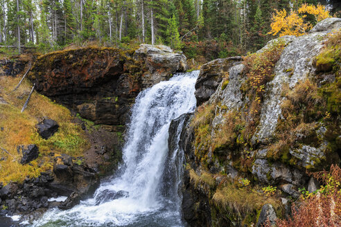 USA, Yellowstone National Park, Moose Falls - FOF08967