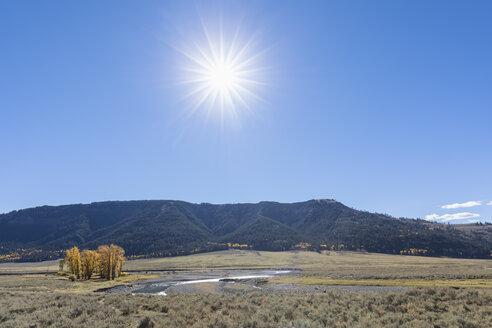 USA, Yellowstone National Park, Lamar Valley, Lamar River - FOF08970