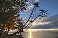 Germany, Bavaria, Lake Starnberg, sunrise - SIEF07312