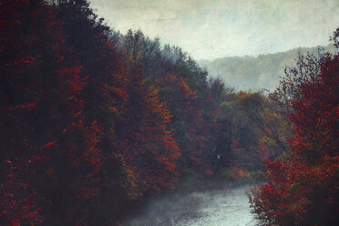 Germany, Wuppertal, trees at river Wupper, textured photography - DWIF00836