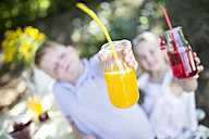 Sister and brother holding glasses of homemade lemonade outdoors - WESTF22812