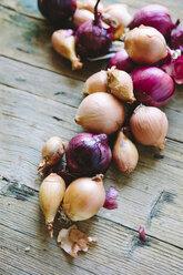 Onions on wood - GIOF02169