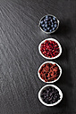 Bowls of blueberries, pomegranate seed, goji berries and chokeberries on slate - CSF27983