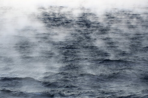 Arctic Ocean, steam raising up from Barents Sea - DSGF01566