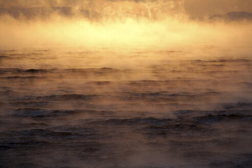 Arctic Ocean, steam raising up from Barents Sea - DSGF01569