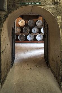 Old wooden barrels at a whisky distillery - ZEF13126