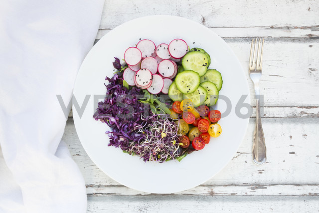 Plate of organic leaf salad, red cabbage, tomatoes, cucumber and radish sprouts - LVF05940
