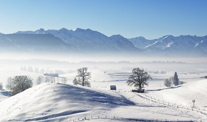 Germany, Pfaffenwinkel, winter landscape at morning mist - LHF00518