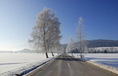 Germany, Sindelsdorf, empty county road in winter - LHF00521