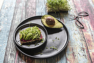 Slice of bread with beetroot hummus, slices of avocado and cress - SARF03256