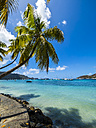 Caribbean, St. Vincent And The Grenadines, Bequia, bay of Port Elisabeth with sailing ships - AMF05334
