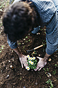 Man planting flowers in his garden - JRFF01266