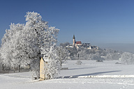 Germany, Bavaria, Pfaffenwinkel, frost at pilgrims' path to Andechs - LBF01581
