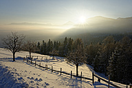 Germany, Bavaria, sunrise at Kogl at Auerberg in winter - LBF01587