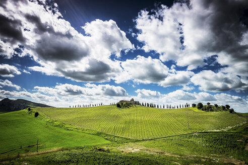 Italy, Sicily, landscape - SIPF01454