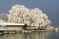 Germany, Bavaria, Chiemsee in winter - THAF01900