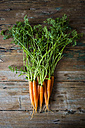 Bunch of carrots on wood - GIOF02263