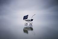 Stroller in a lake - XCF00155