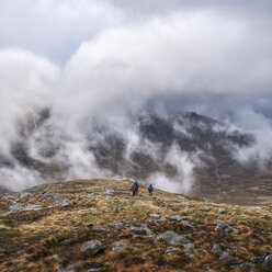 UK, Scotland, Glencoe, trekking at Sron na Lairig - ALRF00863