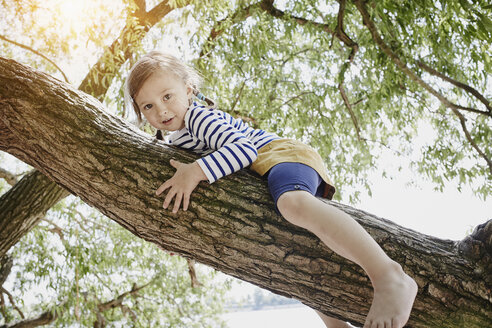 Girl climbing on a tree - RORF00690